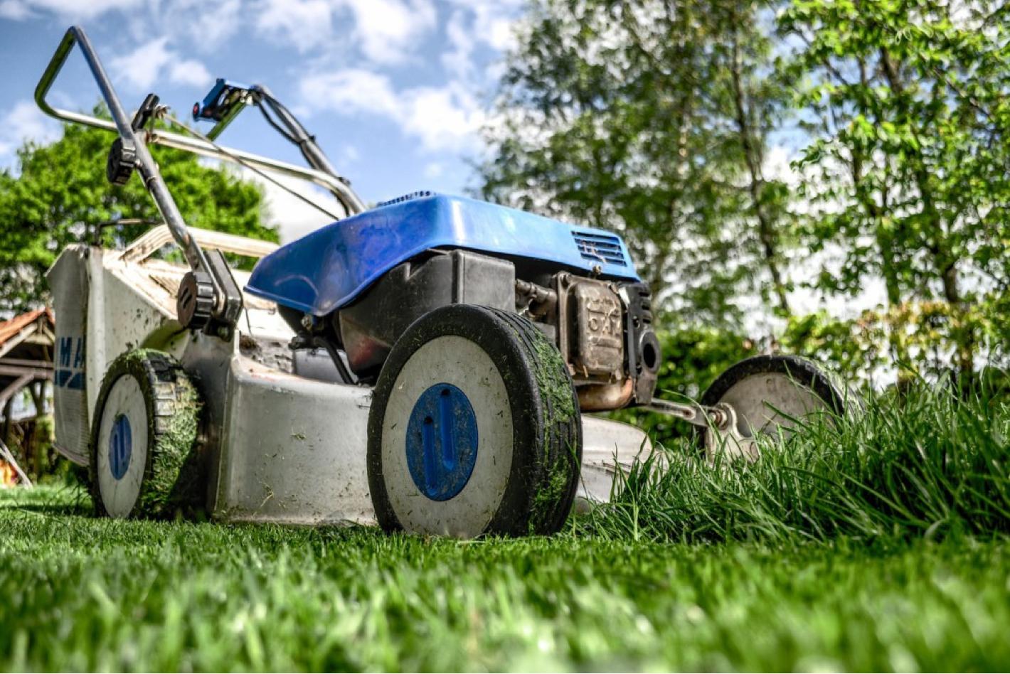 Lassen Sie sich Ihren Garten vom Profi auf Vordermann bringen. Pflege, Strauchschnitt Rasenmähen. Baum Service.